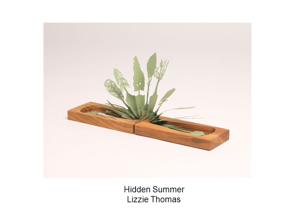 Hidden Summer Lizzie Thomas