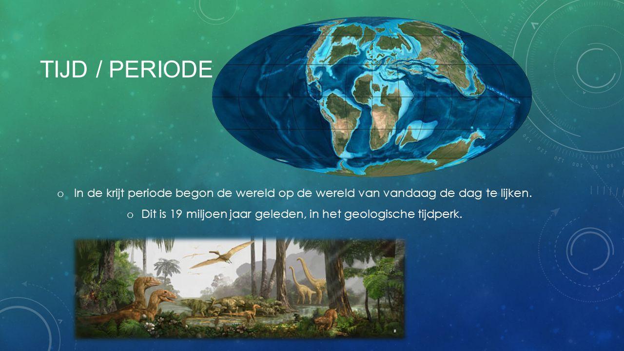 TIJD / PERIODE o In de krijt periode begon de wereld op de wereld van vandaag de dag te lijken. o Dit is 19 miljoen jaar geleden, in het geologische t