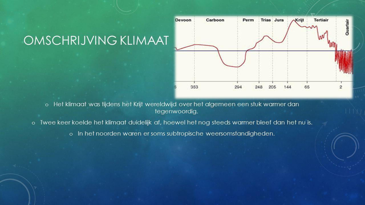 OMSCHRIJVING KLIMAAT o Het klimaat was tijdens het Krijt wereldwijd over het algemeen een stuk warmer dan tegenwoordig. o Twee keer koelde het klimaat