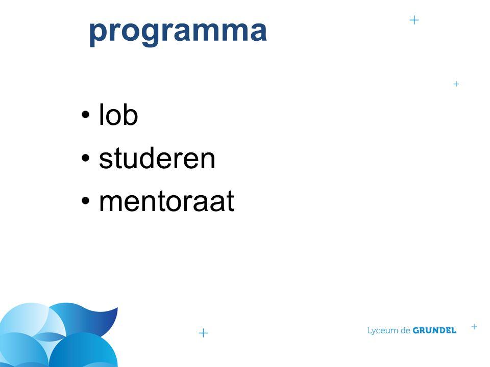 programma lob studeren mentoraat