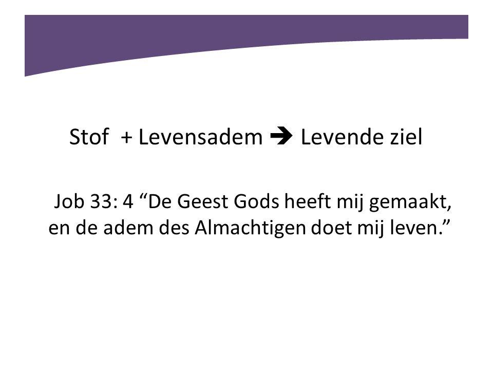 """Stof + Levensadem  Levende ziel Job 33: 4 """"De Geest Gods heeft mij gemaakt, en de adem des Almachtigen doet mij leven."""""""