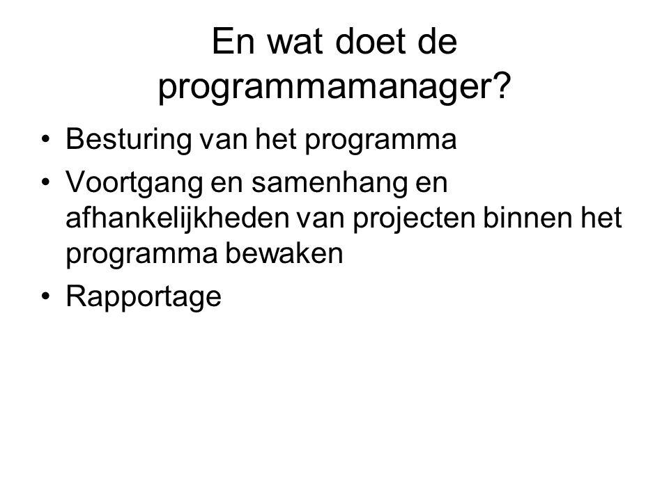 En wat doet de programmamanager.