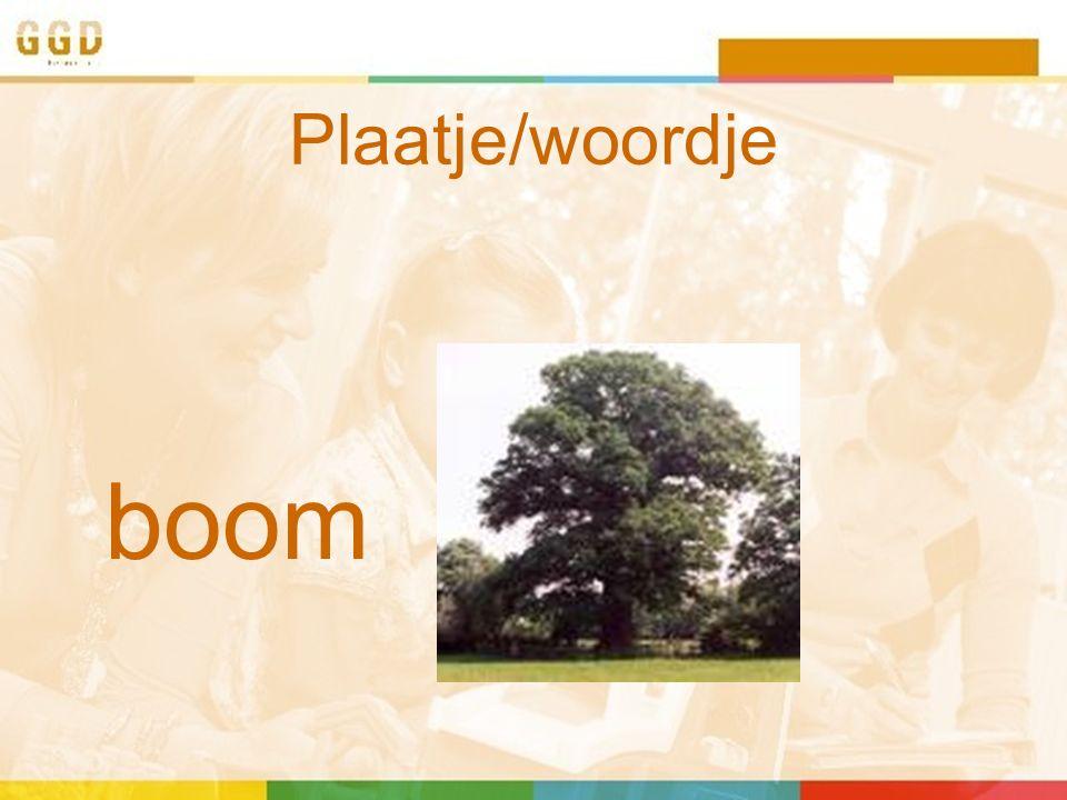Plaatje/woordje boom