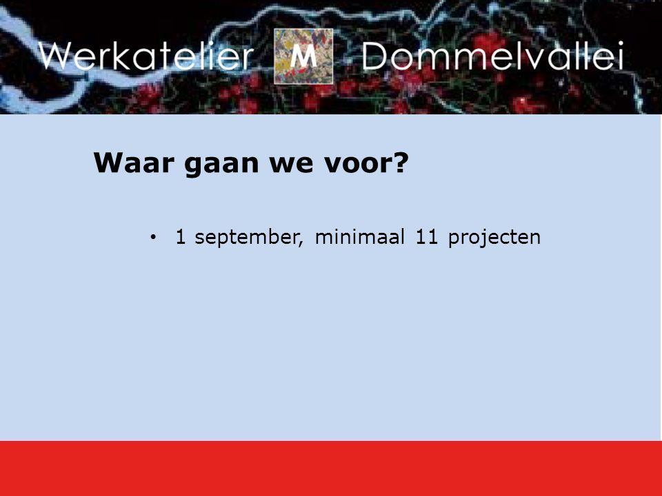 Waar gaan we voor? 1 september, minimaal 11 projecten