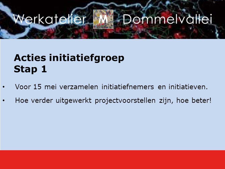 Acties initiatiefgroep Stap 1 Voor 15 mei verzamelen initiatiefnemers en initiatieven.