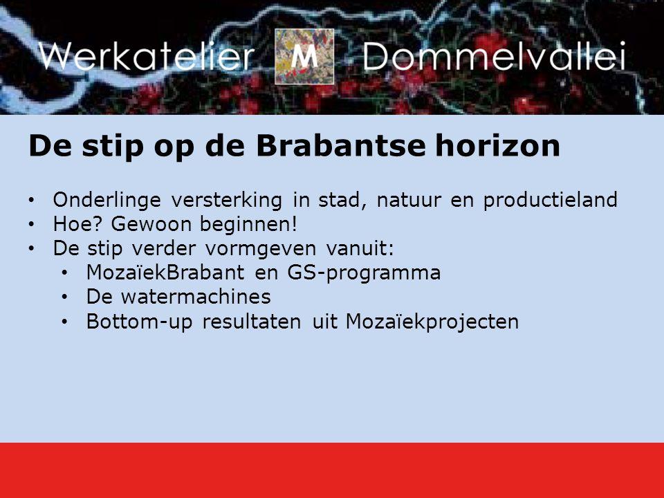 De stip op de Brabantse horizon Onderlinge versterking in stad, natuur en productieland Hoe.