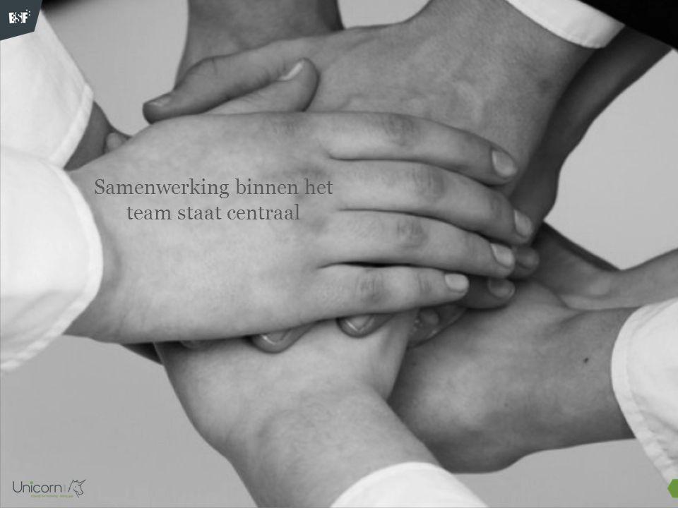 Stap 1 (30'): Verdeel het team in een subgroepjes van 3 tot 5 personen.