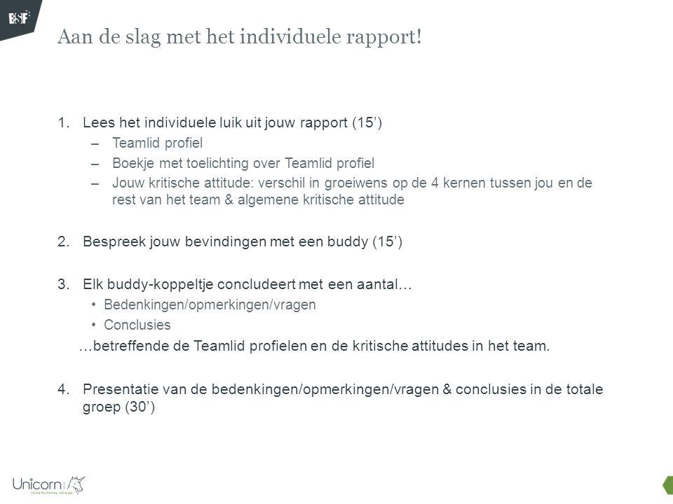 1.Lees het individuele luik uit jouw rapport (15') –Teamlid profiel –Boekje met toelichting over Teamlid profiel –Jouw kritische attitude: verschil in