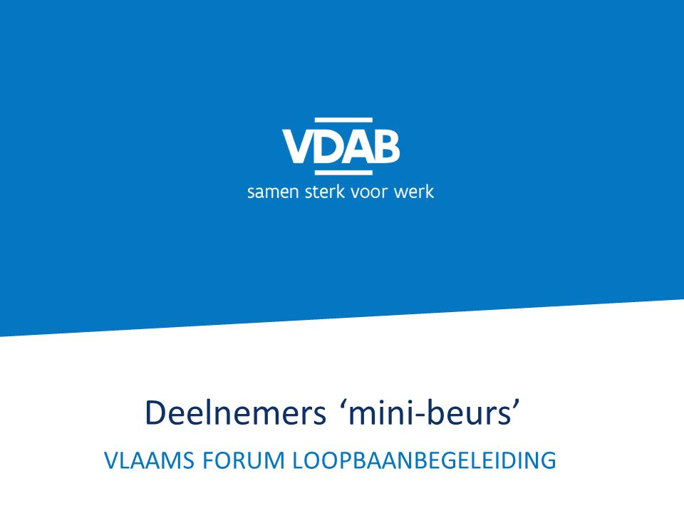 Deelnemers 'mini-beurs' VLAAMS FORUM LOOPBAANBEGELEIDING