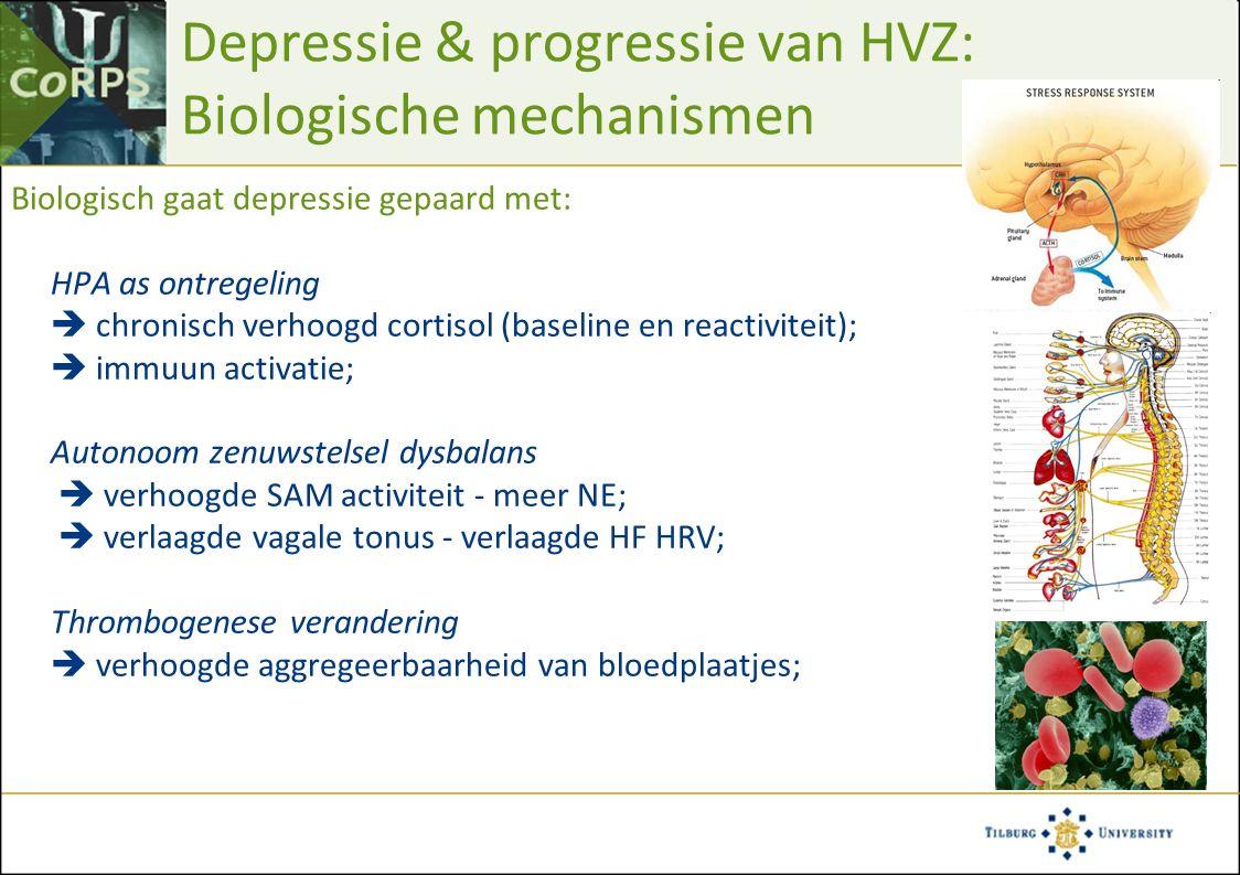 Depressie & progressie van HVZ: Biologische mechanismen Biologisch gaat depressie gepaard met: HPA as ontregeling  chronisch verhoogd cortisol (baseline en reactiviteit);  immuun activatie; Autonoom zenuwstelsel dysbalans  verhoogde SAM activiteit - meer NE;  verlaagde vagale tonus - verlaagde HF HRV; Thrombogenese verandering  verhoogde aggregeerbaarheid van bloedplaatjes;