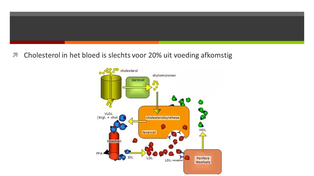  Cholesterol in het bloed is slechts voor 20% uit voeding afkomstig