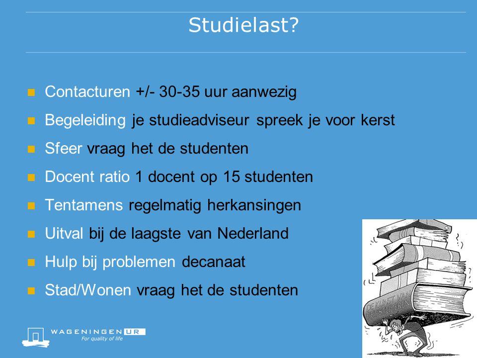 Studielast.