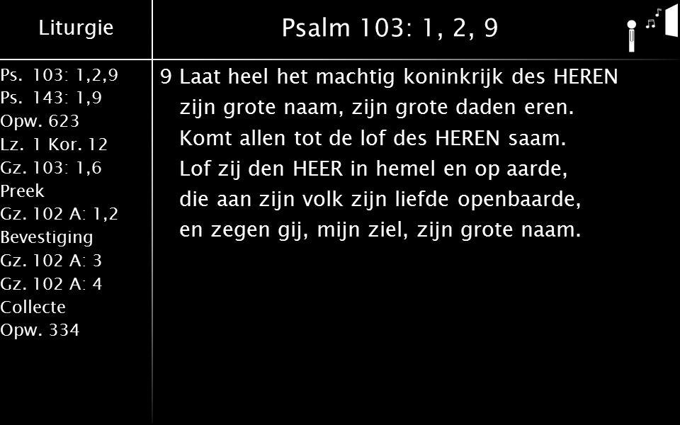 Liturgie Ps.103: 1,2,9 Ps.143: 1,9 Opw.623 Lz.1 Kor. 12 Gz.103: 1,6 Preek Gz.102 A: 1,2 Bevestiging Gz.102 A: 3 Gz.102 A: 4 Collecte Opw.334 Psalm 103