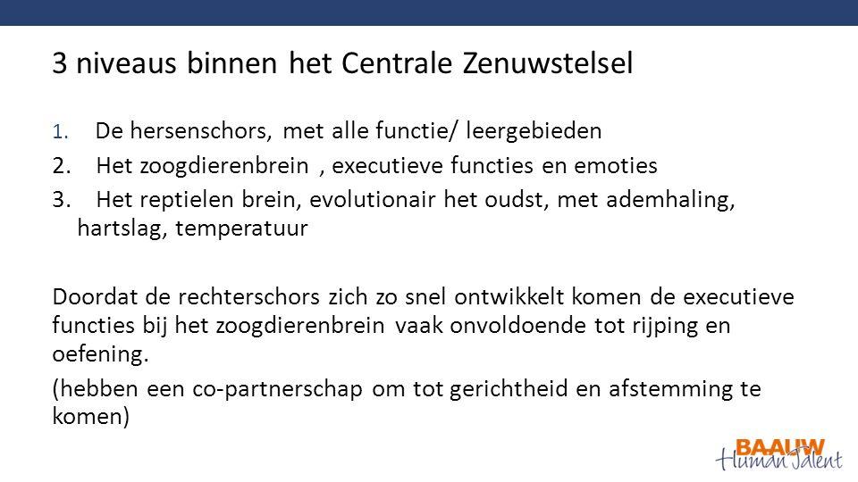 1. De hersenschors, met alle functie/ leergebieden 2.