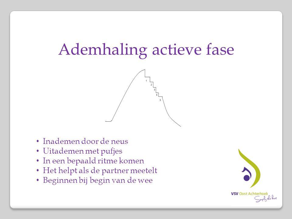 Ademhaling actieve fase Inademen door de neus Uitademen met pufjes In een bepaald ritme komen Het helpt als de partner meetelt Beginnen bij begin van