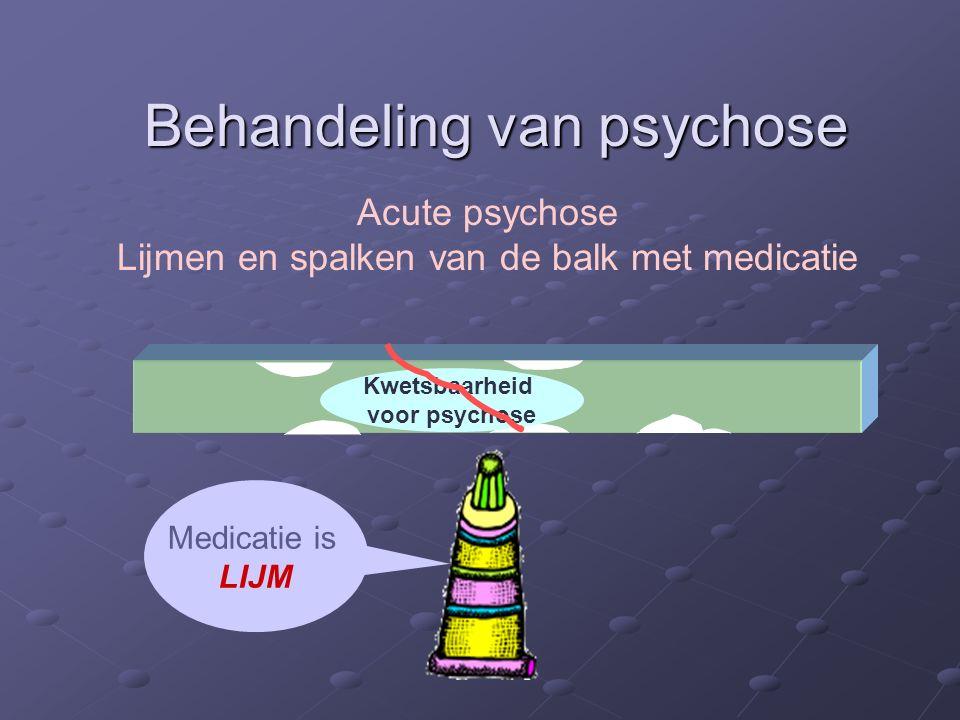 Acute psychose Lijmen en spalken van de balk met medicatie Behandeling van psychose Kwetsbaarheid voor psychose Medicatie is LIJM