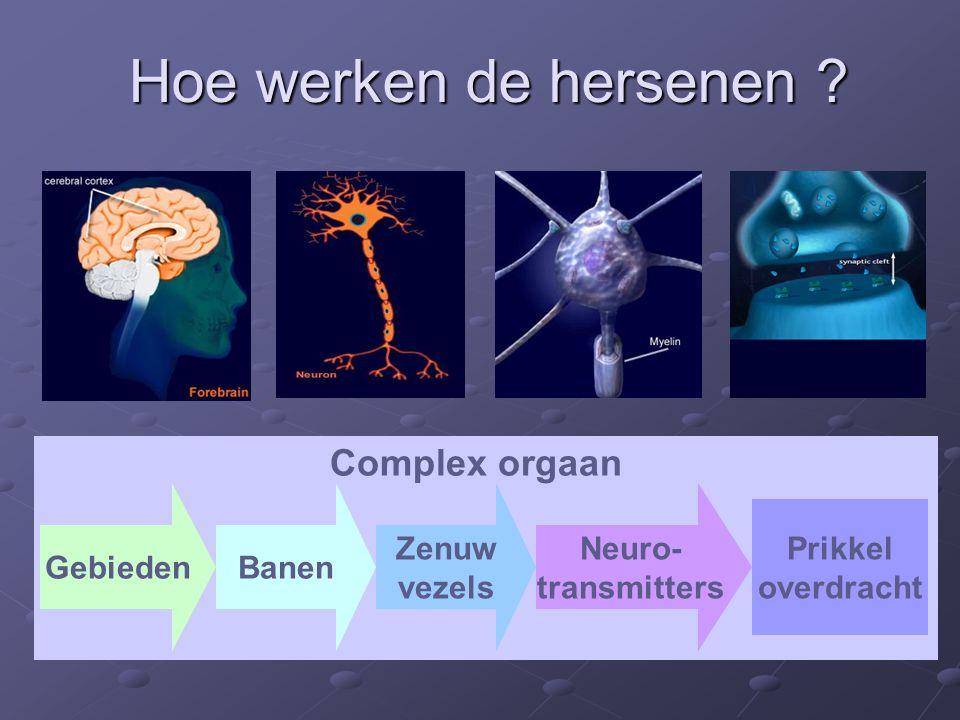 Hoe werken de hersenen ? GebiedenBanen Zenuw vezels Neuro- transmitters Complex orgaan Prikkel overdracht
