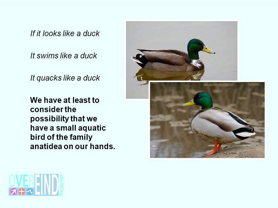 If it looks like a duck It swims like a duck It quacks like a duck We have at least to consider the possibility that we have a small aquatic bird of the family anatidea on our hands.