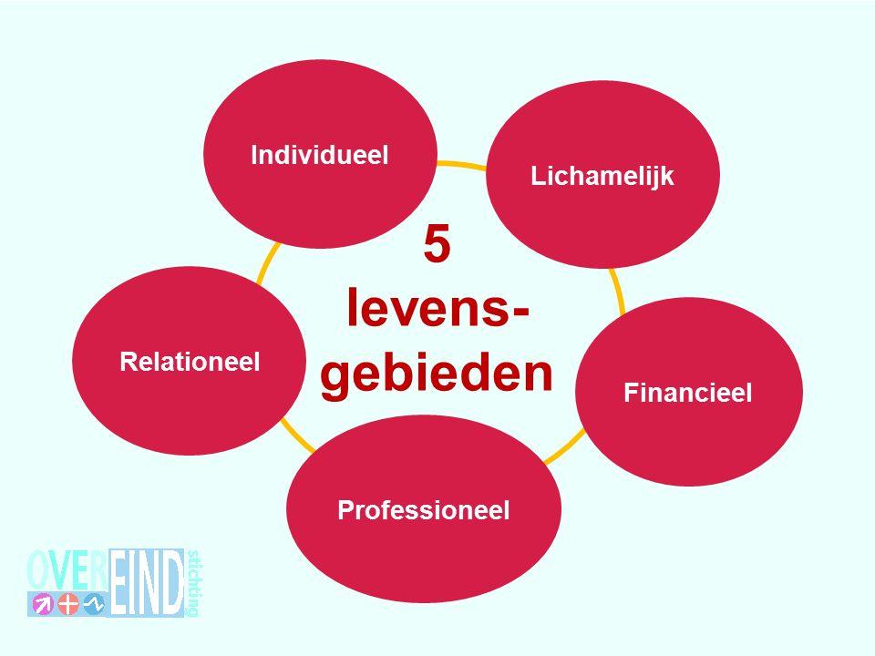 5 levens- gebieden Individueel Relationeel Financieel Lichamelijk Professioneel