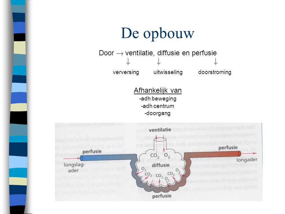 Stoornissen in de adh  O2  toediening extra O2 Hoeveelheid CO2 in lichaam bepaald de zuurgraad (Ph) in het bloed Ph neutraal = 7 H2O = H+ + OH- Stij