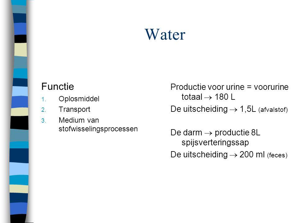 De Vochtbalans Weten jullie dat? 1. Lichaam uit..% uit water bestaat 2...% van de hoeveelheid water  intracellulair 3...% van de hoeveelheid water 