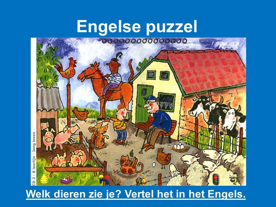 Engelse puzzel Welk dieren zie je Vertel het in het Engels.