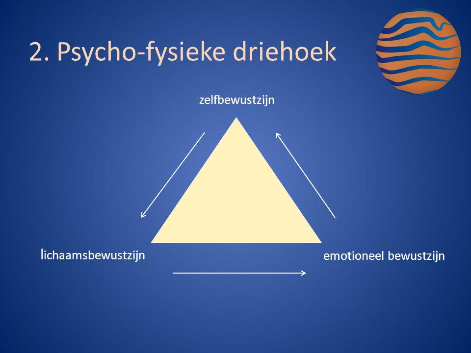 zelfbewustzijn l ichaamsbewustzijn emotioneel bewustzijn 2.Psycho-fysieke driehoek