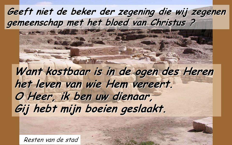 Resten van de stad Geeft niet de beker der zegening die wij zegenen gemeenschap met het bloed van Christus .