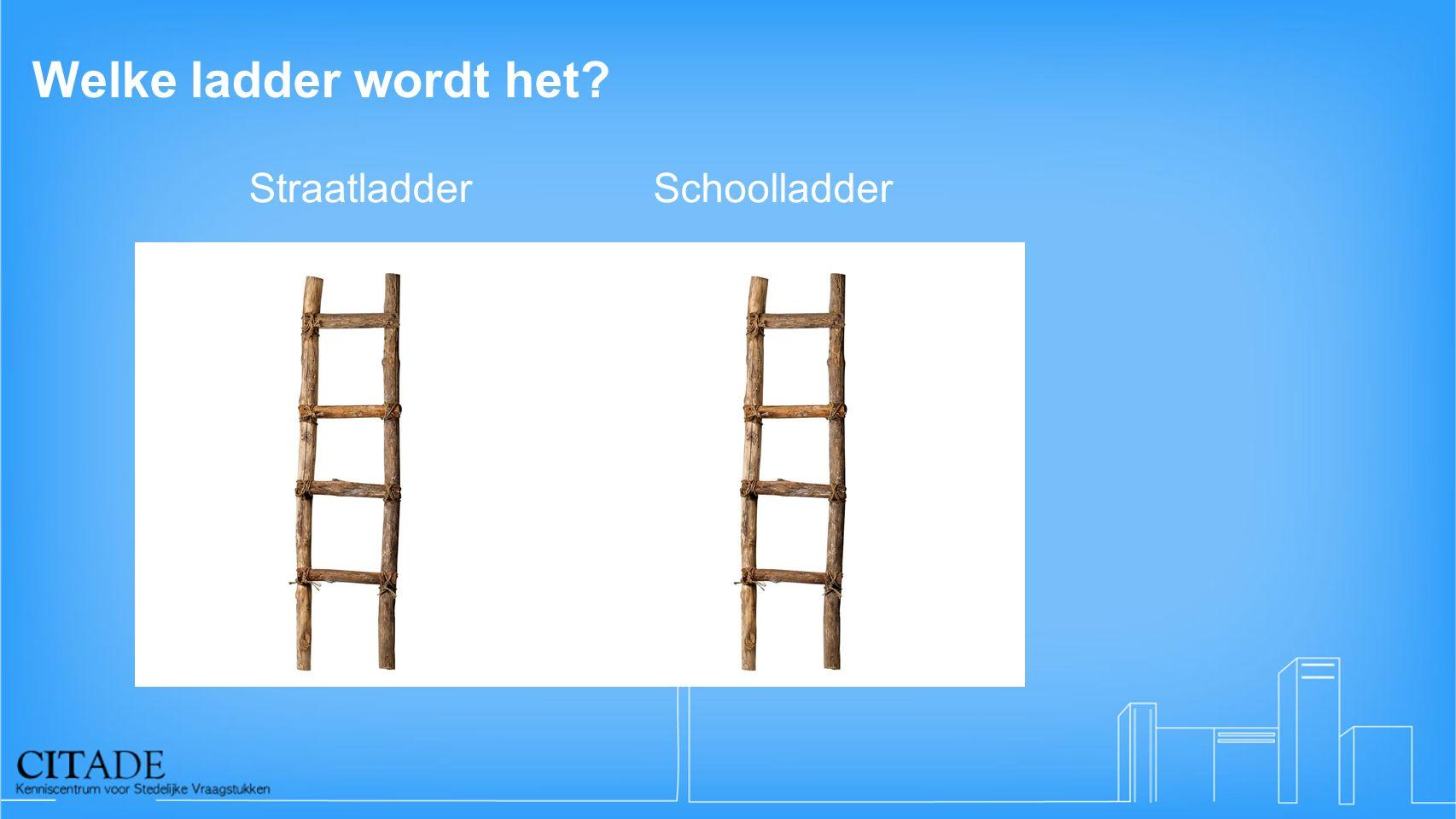 Welke ladder wordt het? StraatladderSchoolladder