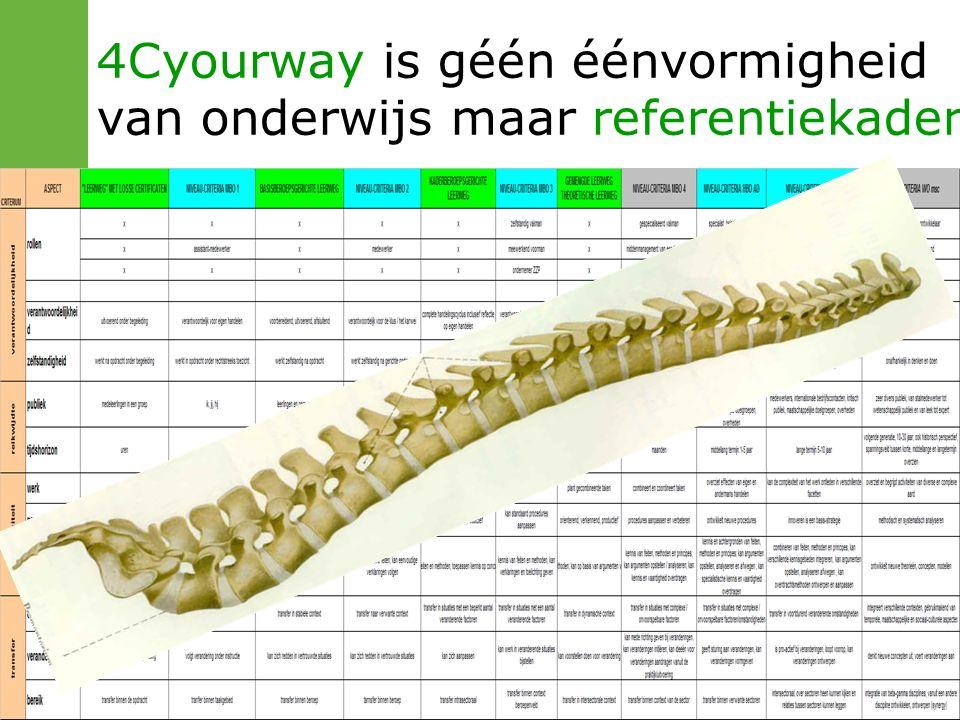 4Cyourway is géén éénvormigheid van onderwijs maar referentiekader