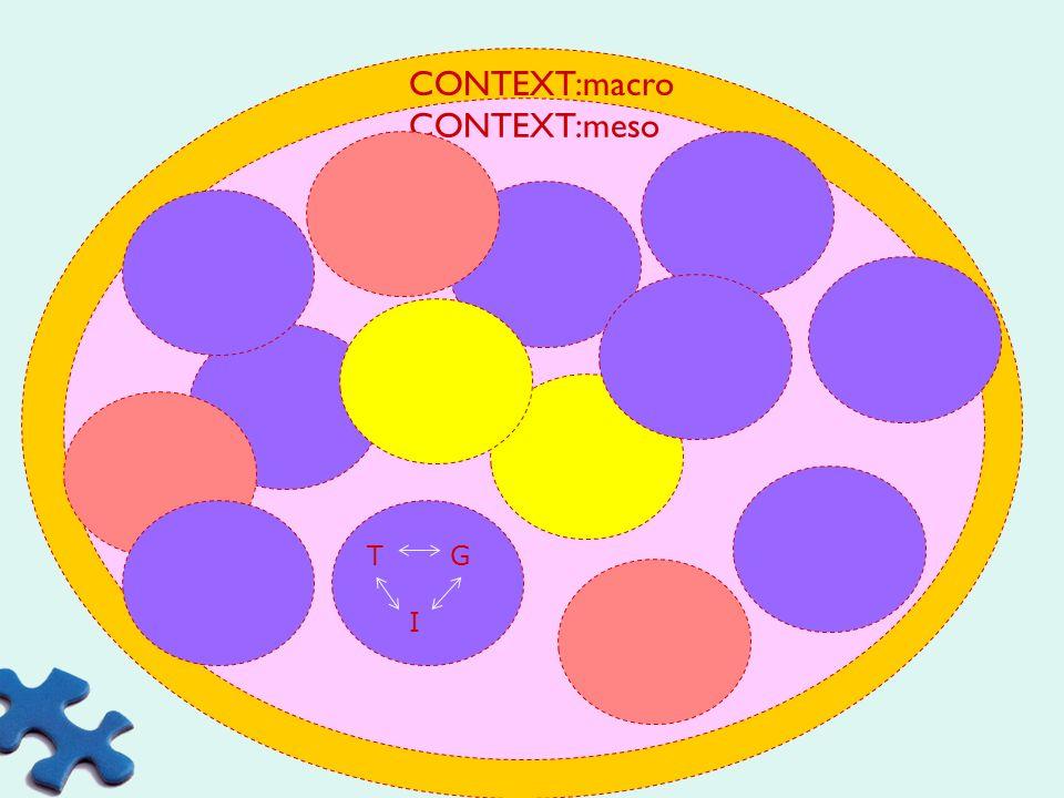 te situeren in volgende velden GROEPTAAK INDIVIDU School context Maatschappelijke context Thema Scholengemeenschap