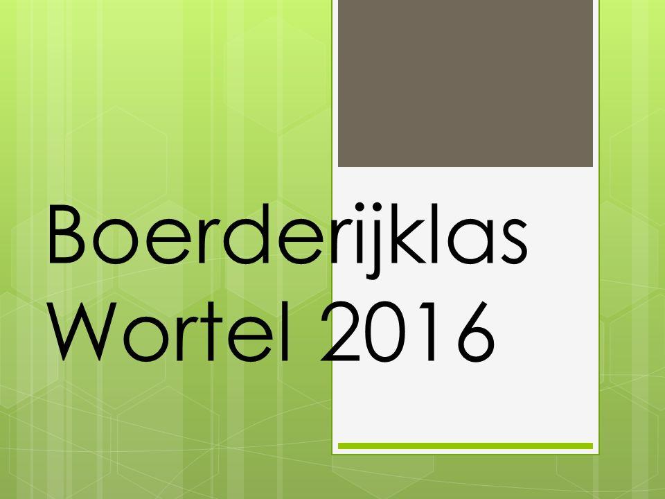 Boerderijklas Wortel 2016
