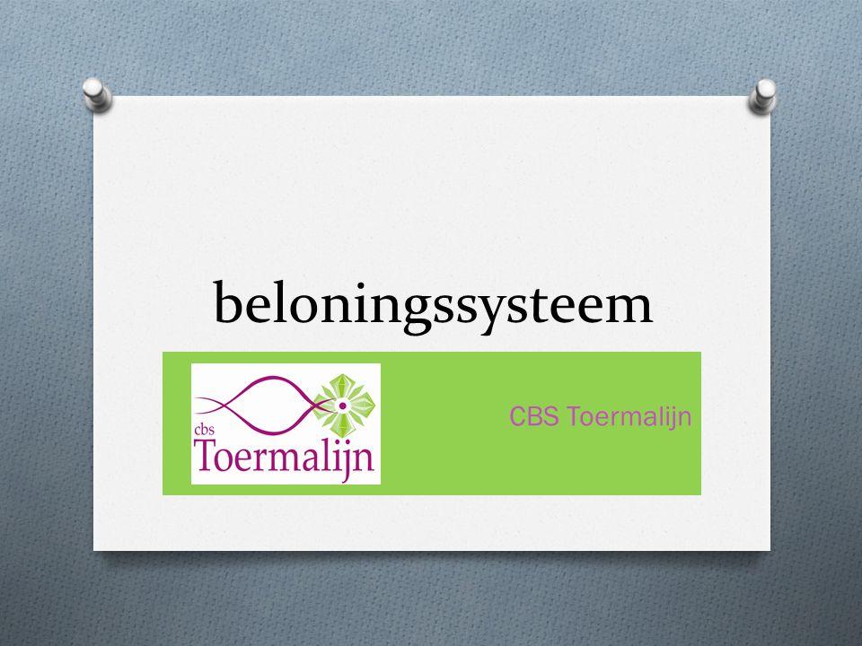beloningssysteem CBS Toermalijn