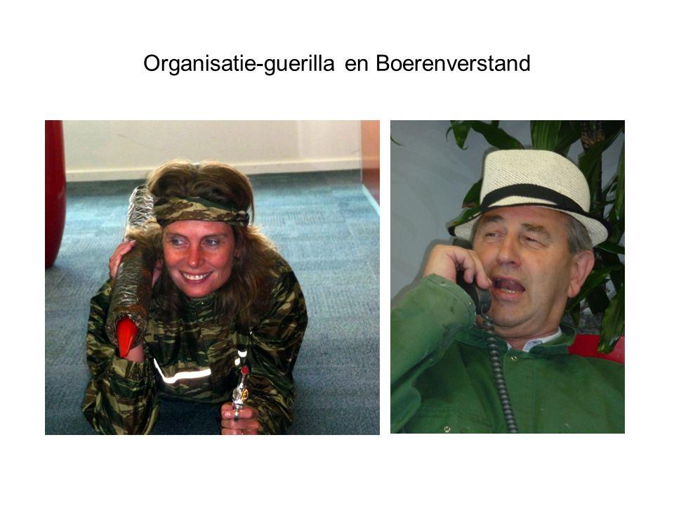 Organisatie-guerilla en Boerenverstand
