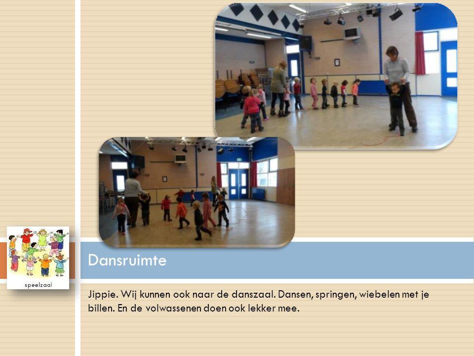 Jippie. Wij kunnen ook naar de danszaal. Dansen, springen, wiebelen met je billen. En de volwassenen doen ook lekker mee. Dansruimte