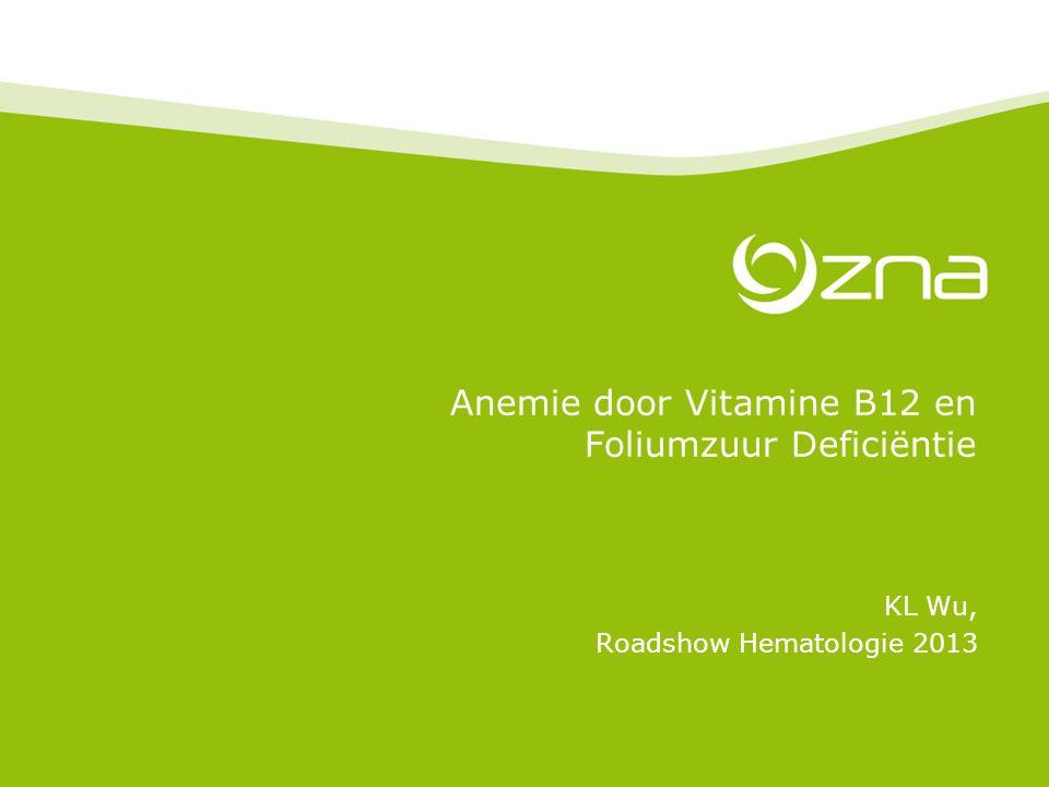 Anemie door Vitamine B12 en Foliumzuur Deficiëntie KL Wu, Roadshow Hematologie 2013