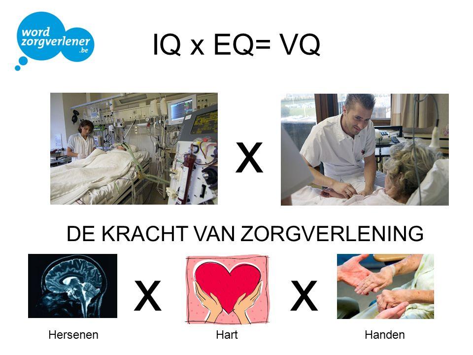IQ x EQ= VQ x DE KRACHT VAN ZORGVERLENING HandenHartHersenen xx