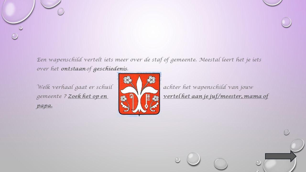 Wapenschild Veel steden en gemeenten hebben een eigen vlag of wapenschild..