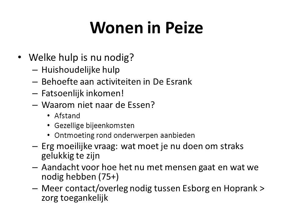 Wonen in Peize Welke hulp is nu nodig.
