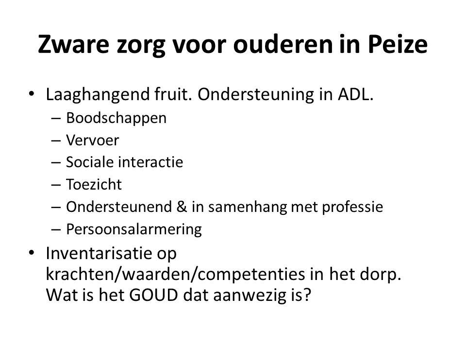 Zware zorg voor ouderen in Peize Laaghangend fruit. Ondersteuning in ADL. – Boodschappen – Vervoer – Sociale interactie – Toezicht – Ondersteunend & i