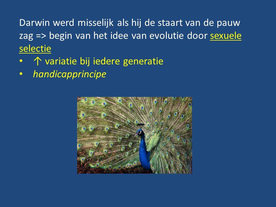Darwin werd misselijk als hij de staart van de pauw zag => begin van het idee van evolutie door sexuele selectie ↑ variatie bij iedere generatie handicapprincipe