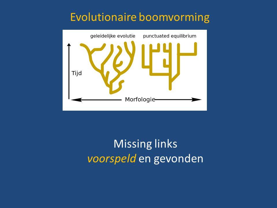 Evolutionaire boomvorming Missing links voorspeld en gevonden