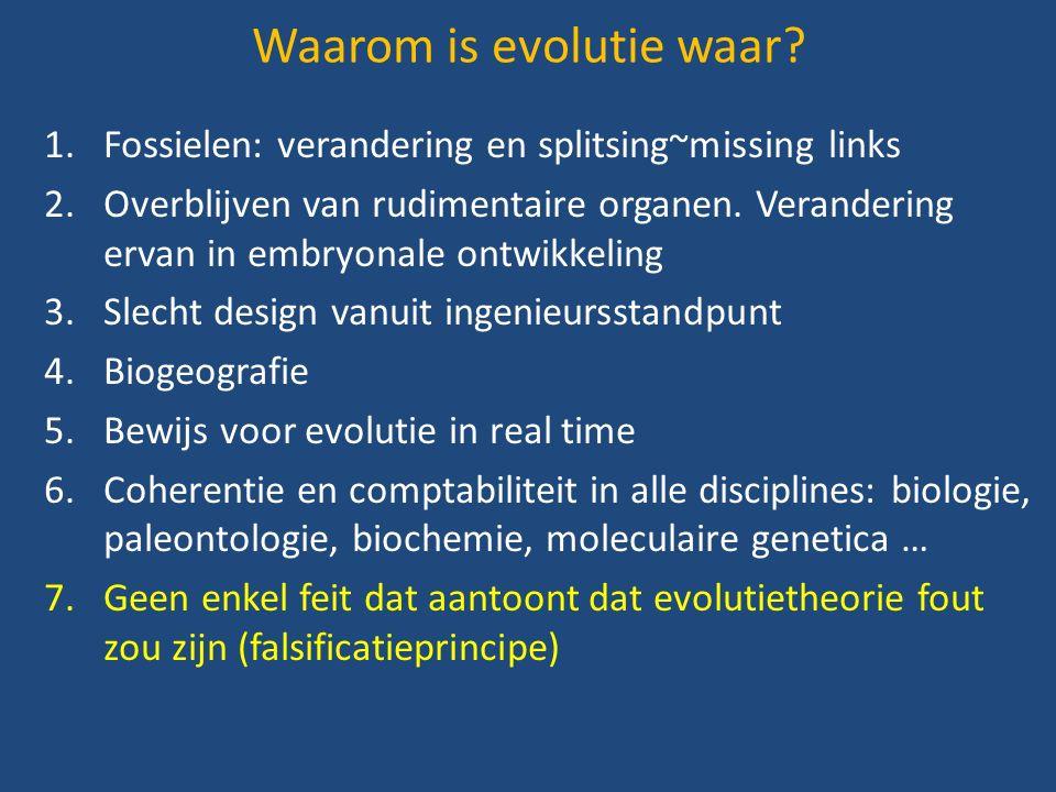 1.Fossielen: verandering en splitsing~missing links 2.Overblijven van rudimentaire organen.