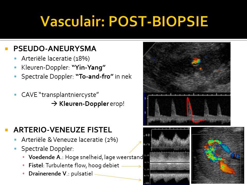  PSEUDO-ANEURYSMA  Arteriële laceratie (18%)  Kleuren-Doppler: Yin-Yang  Spectrale Doppler: To-and-fro in nek  CAVE transplantniercyste  Kleuren-Doppler erop.