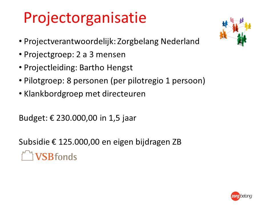 Projectorganisatie Projectverantwoordelijk: Zorgbelang Nederland Projectgroep: 2 a 3 mensen Projectleiding: Bartho Hengst Pilotgroep: 8 personen (per pilotregio 1 persoon) Klankbordgroep met directeuren Budget: € 230.000,00 in 1,5 jaar Subsidie € 125.000,00 en eigen bijdragen ZB