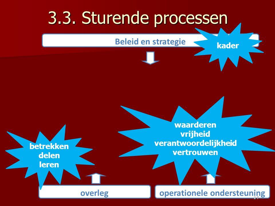 3.3. Sturende processen Beleid en strategie overlegoperationele ondersteuning kader waarderen vrijheid verantwoordelijkheid vertrouwen betrekken delen