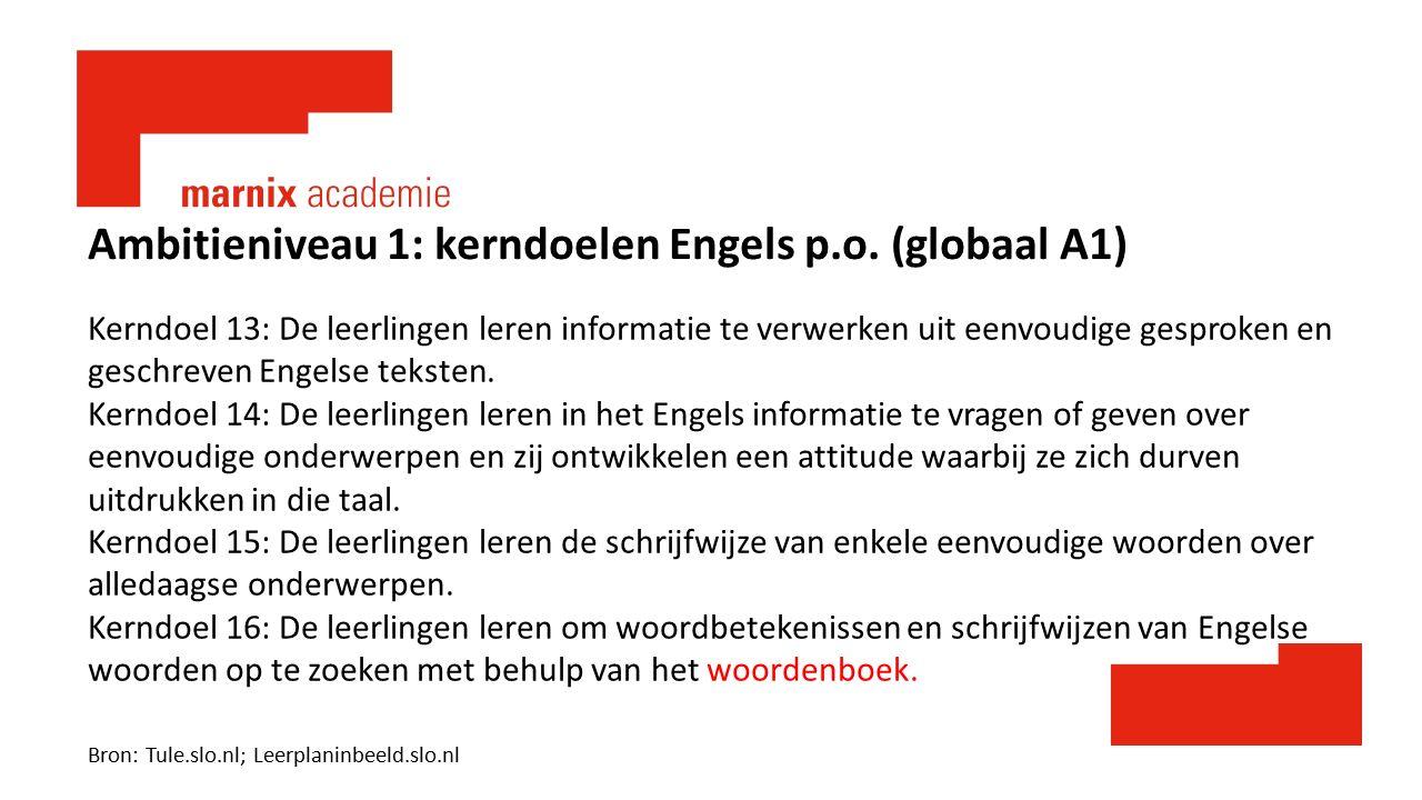 Ambitieniveau 1: kerndoelen Engels p.o. (globaal A1) Kerndoel 13: De leerlingen leren informatie te verwerken uit eenvoudige gesproken en geschreven E
