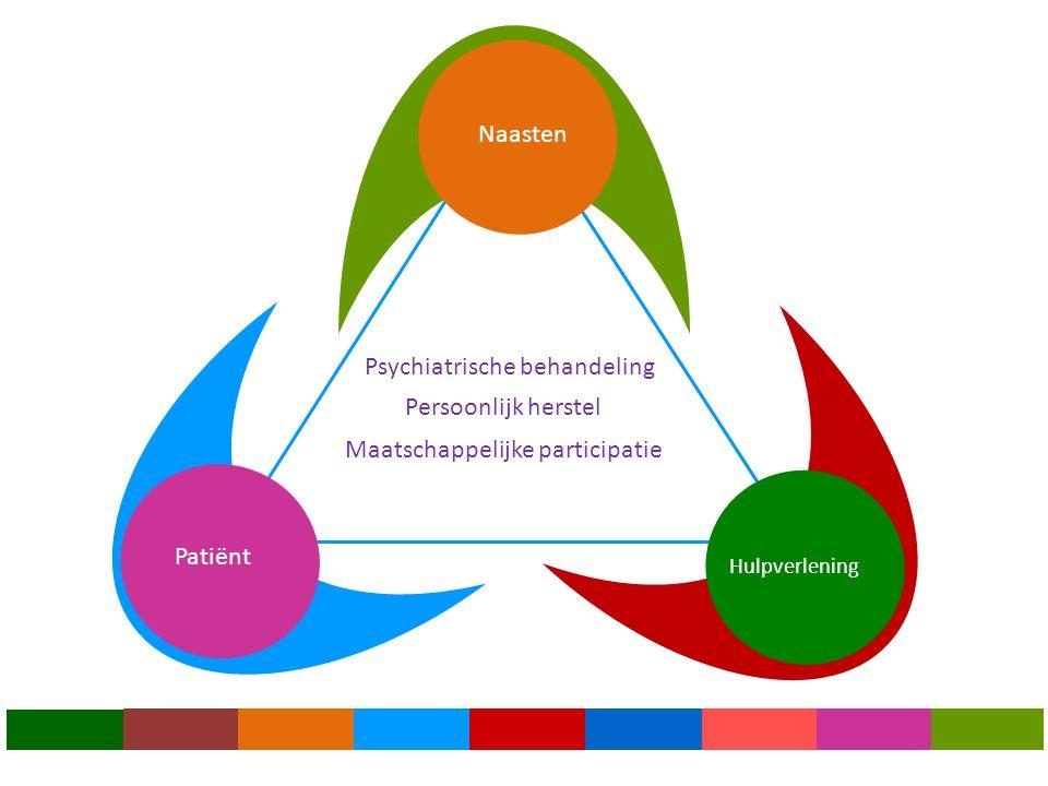 Persoonlijk herstel Psychiatrische behandeling Maatschappelijke participatie Hulpverlening Patiënt Naasten