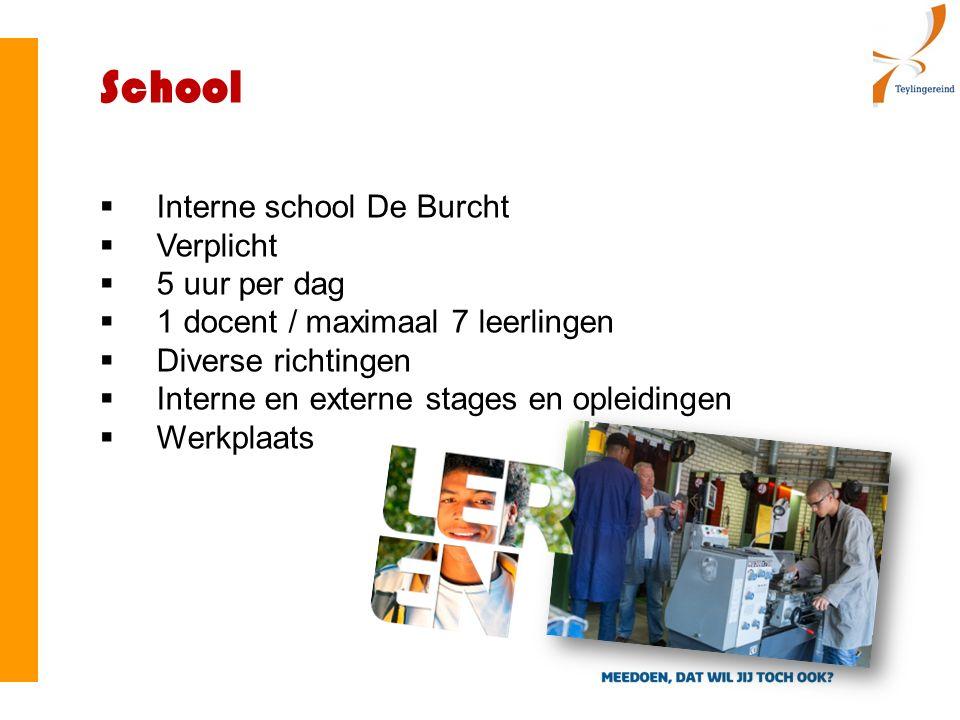  Interne school De Burcht  Verplicht  5 uur per dag  1 docent / maximaal 7 leerlingen  Diverse richtingen  Interne en externe stages en opleidingen  Werkplaats School