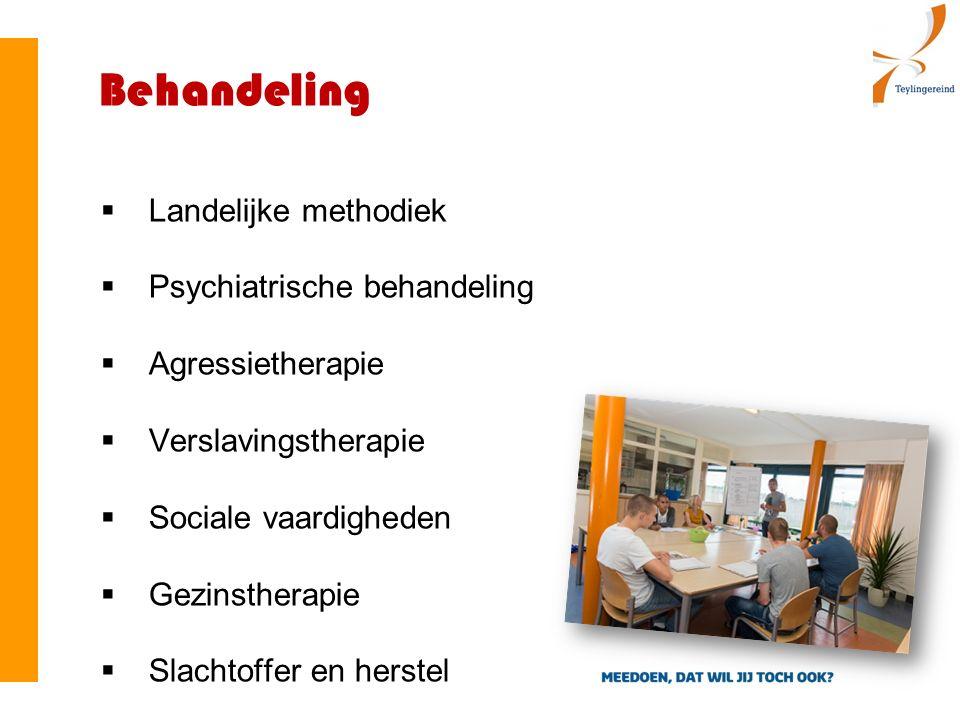 Behandeling  Landelijke methodiek  Psychiatrische behandeling  Agressietherapie  Verslavingstherapie  Sociale vaardigheden  Gezinstherapie  Slachtoffer en herstel